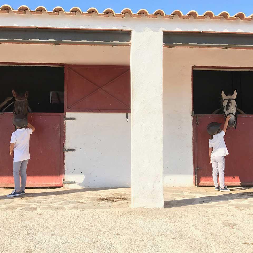 actividades jaen vilches rutas caballo 03