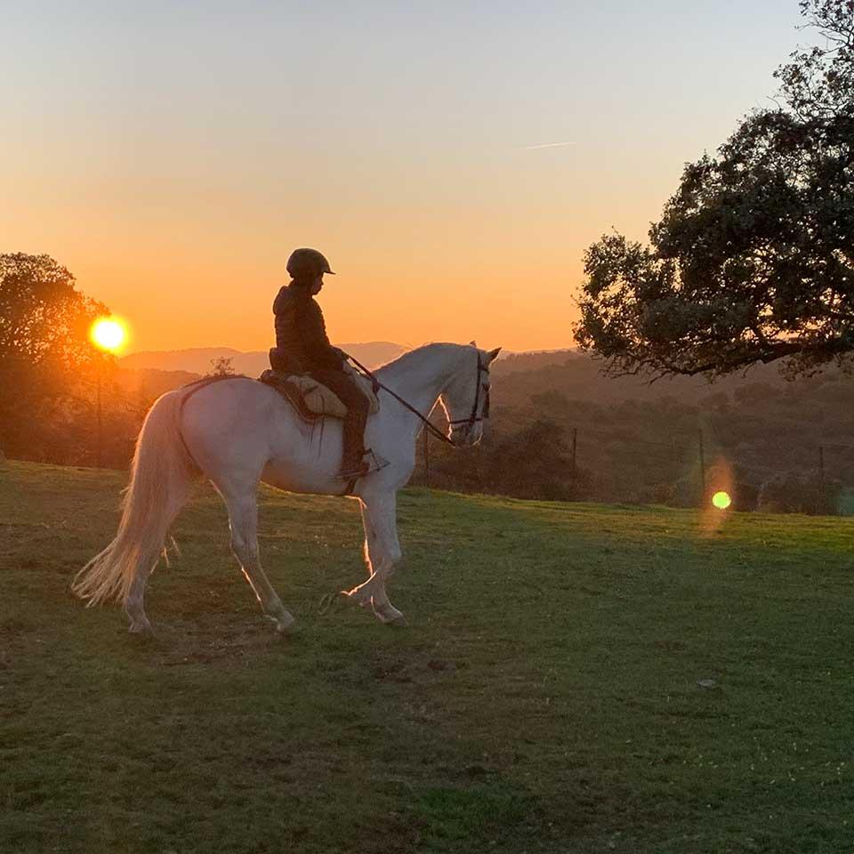 actividades jaen vilches rutas caballo 05