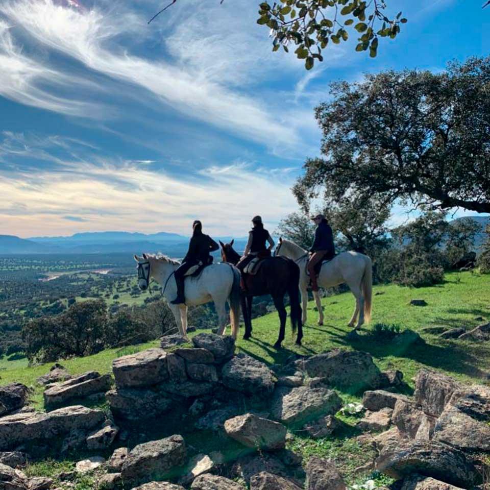 actividades jaen vilches rutas caballo 02