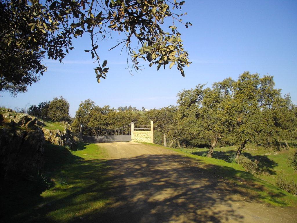 Entrada a la Finca El Añadío desde Vilches